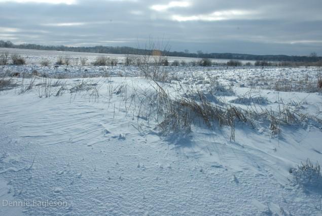 dennie_winter_howell_farm_lodging-2-of-3