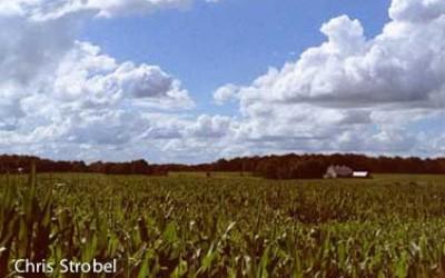 Howell Farm Photo by Chris Strobel